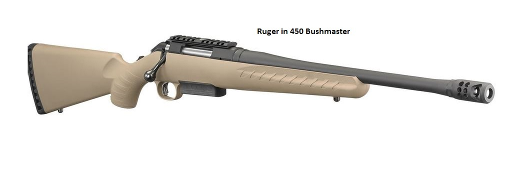 Ruger American Rifle Ranch in 450 Bushmaster